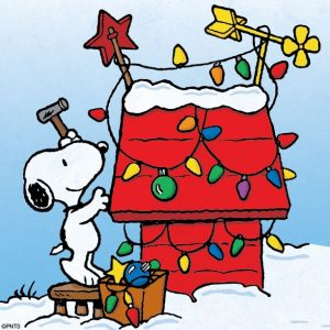 snoopychristmasdoghouse